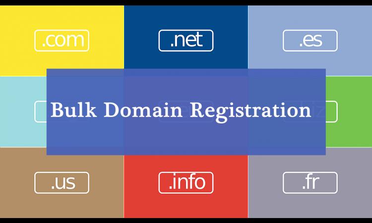 Domain satuan / borongan