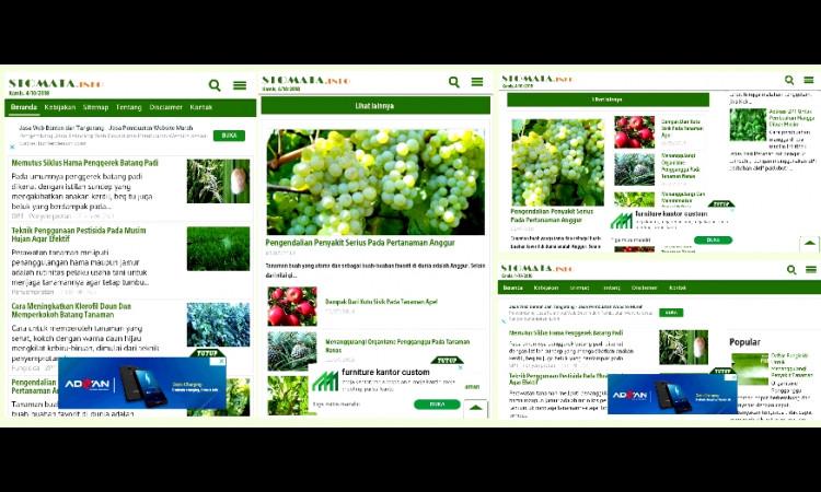 Jual Website domain Ltd. + akun Adsense