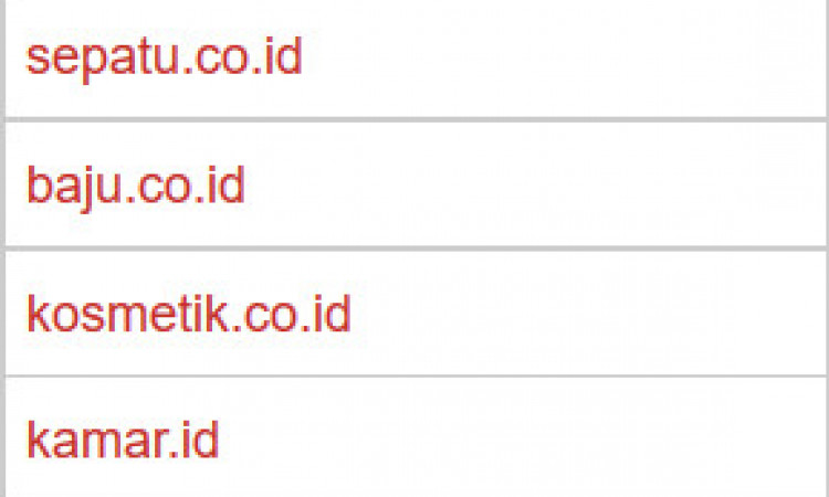 Premium Domain .id dan .co.id