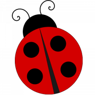 qi bug